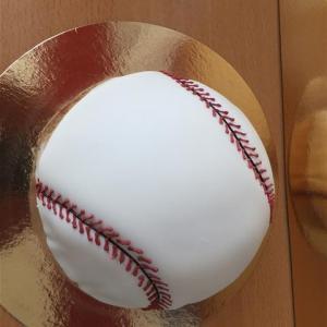 baseball_torte_20130509_1572656885